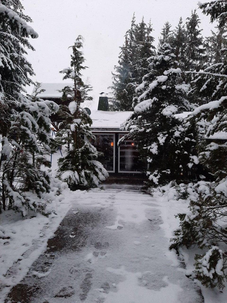 Ferienhaus Harz-Auszeit - 20