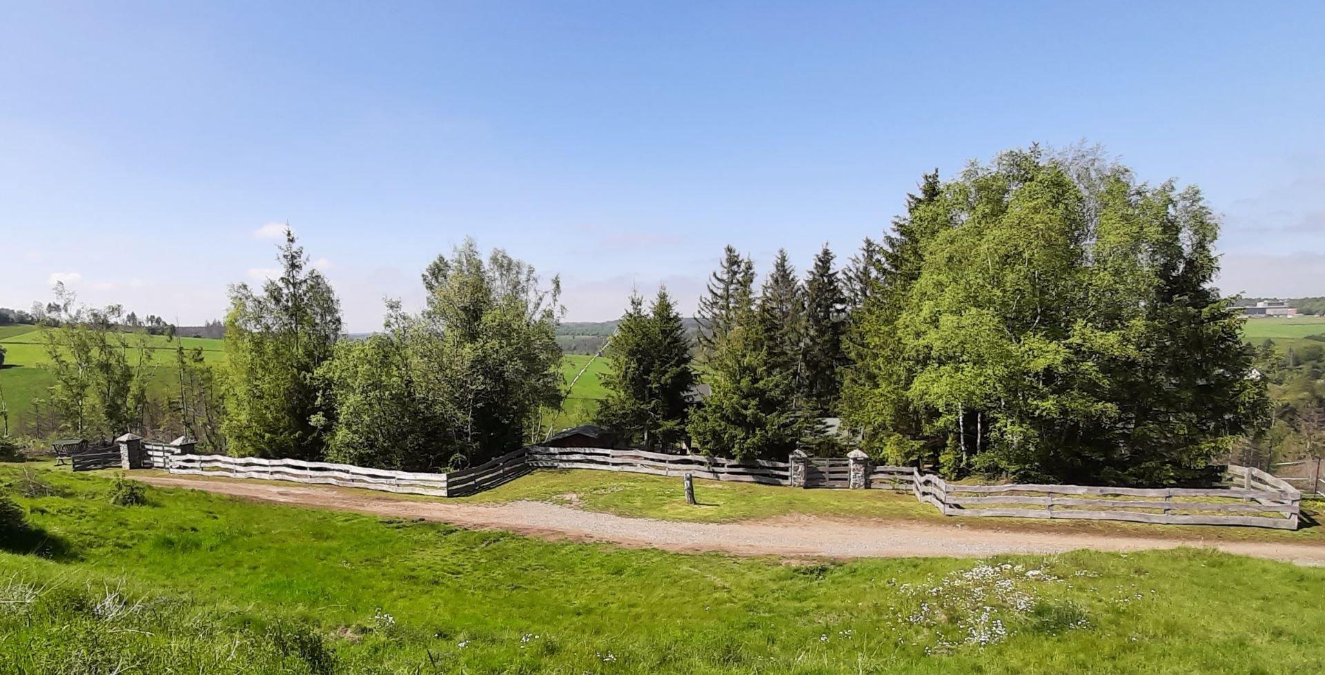 Ferienhaus Harz-Auszeit - 2